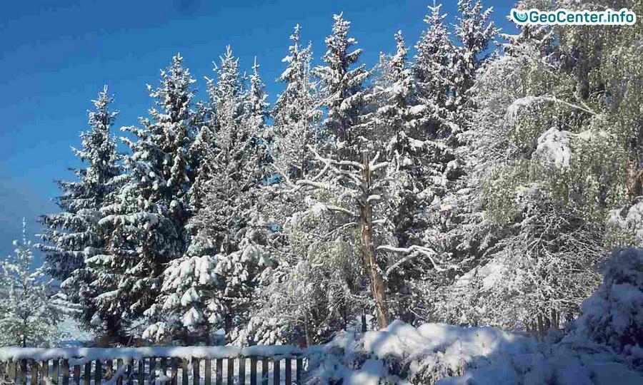 Снегопад в Белоруссии в мае
