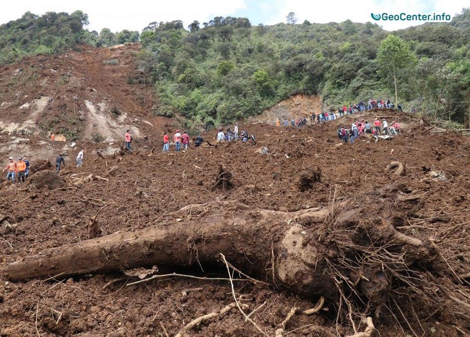 Сход селевого потока в пригороде столицы Гвинеи Конакри, август 2017 года.