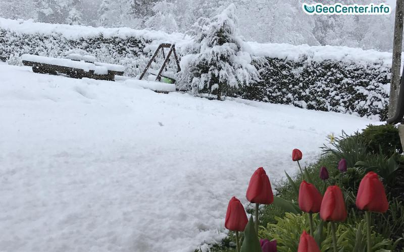 В Литве и Эстонии выпал снег в мае