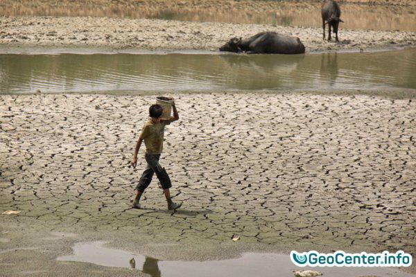 Заморозки в Украине и аномальная жара в Китае, Японии и Индии 23 мая.