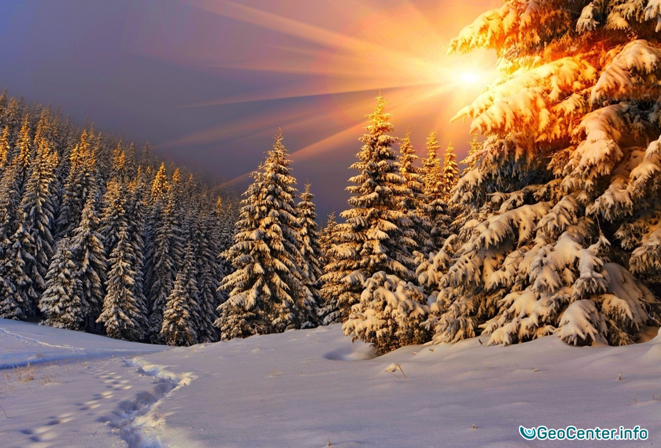 Картинки зимы идет ураган