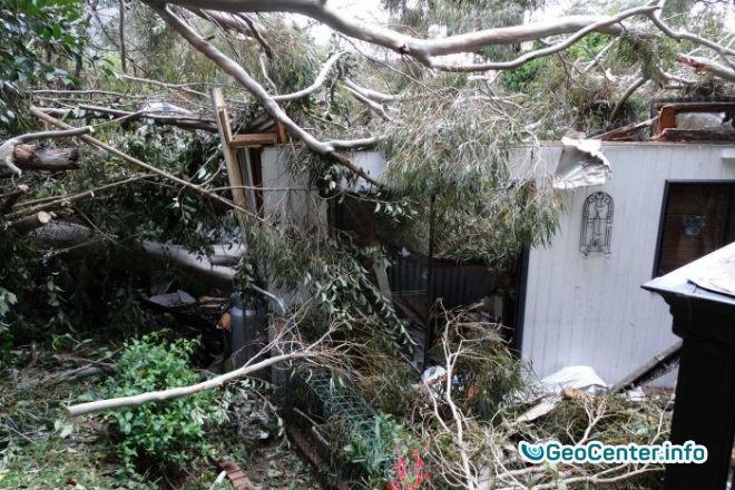 Сильнейшая буря обрушилась на австралийский штат Виктория