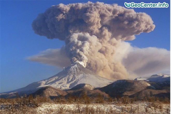 Два выброса пепла произошли на вулкане Шивелуч