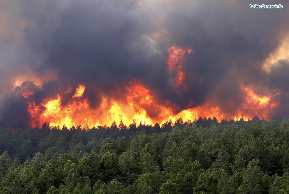 Лесные пожары на территории РФ, апрель 2017 года