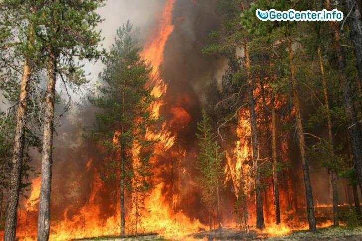 Калифорния (округ Лос-Анджелес)- пожар Томас и 200000 потерпевших