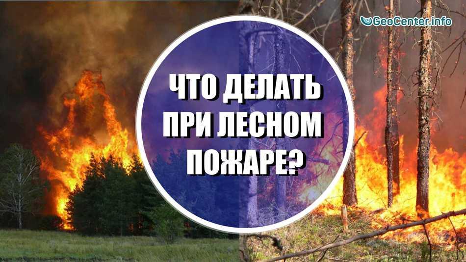 Что делать при лесном пожаре? Памятка при ЧС