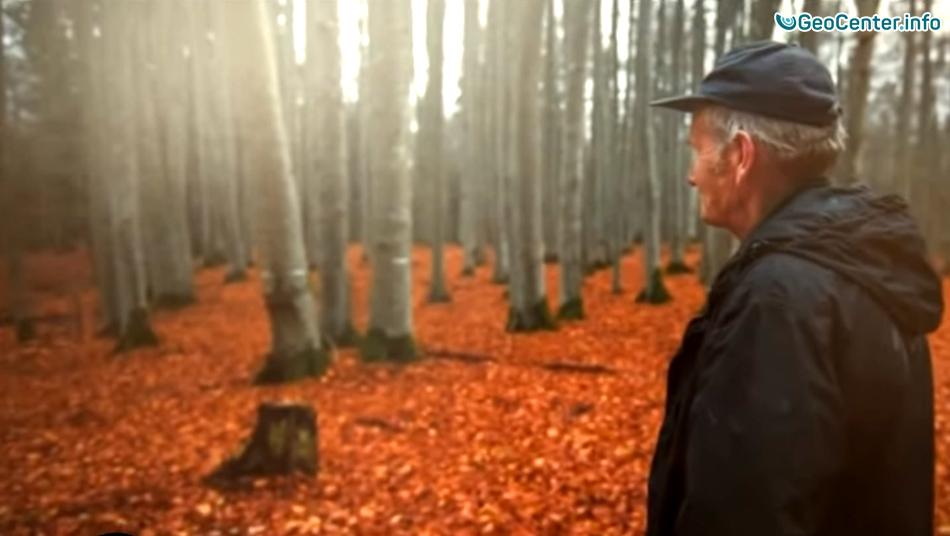 Изменения климата в Латвии