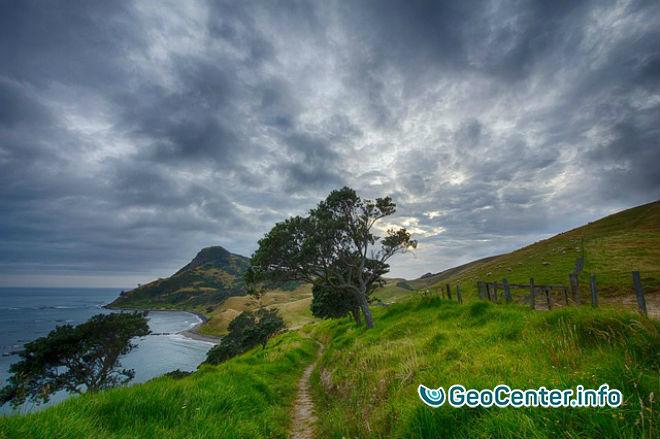 Два землетрясения магнитудой 6,0 у берегов Новой Зеландии, июнь 2017