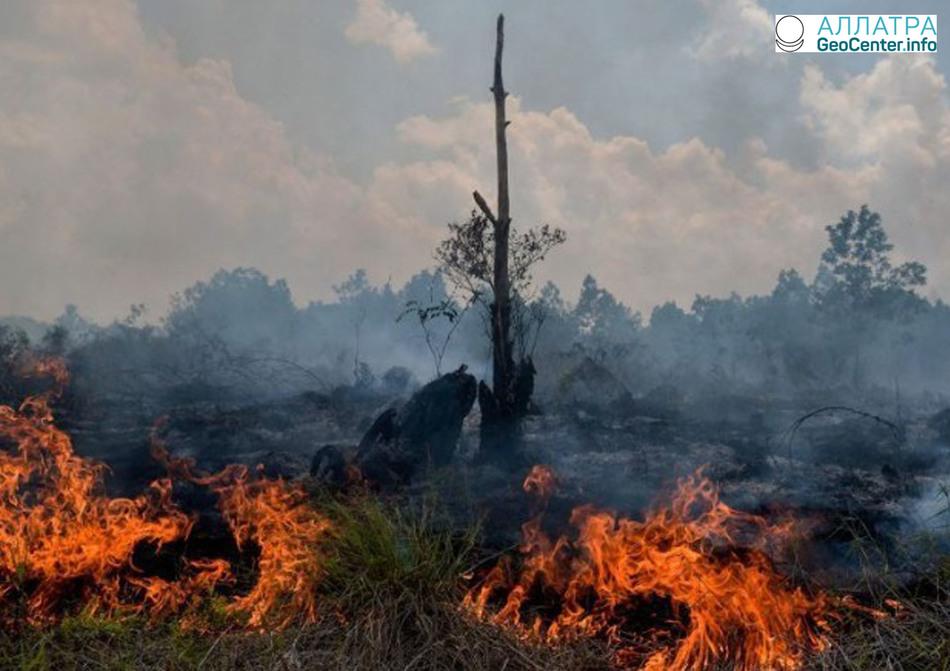 Природные пожары в Индонезии, февраль 2018 г.