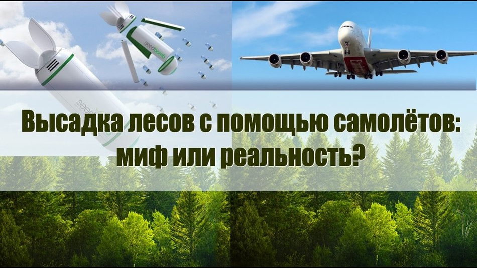 Посадка деревьев с помощью военной техники. Миф или реальность?