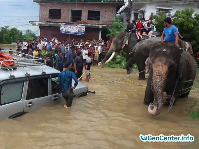 Последствия наводнений и оползней в Непале, август 2017 года