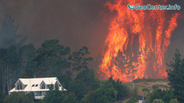 На острове Южный в Новой Зеландии возникли сильные лесные пожары