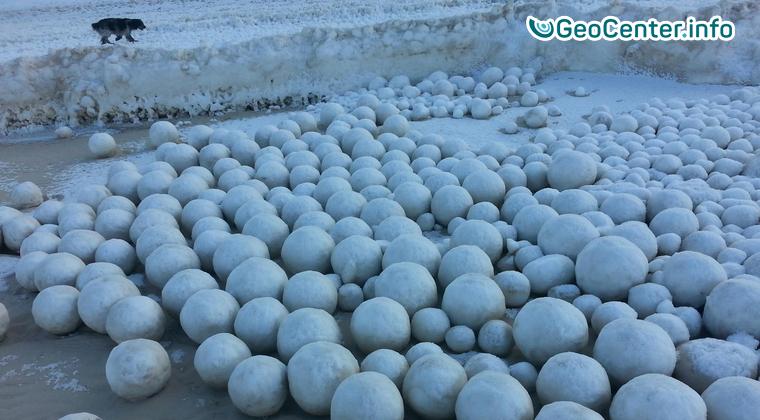 На пляже Ямала играли в снежки весёлые Боги