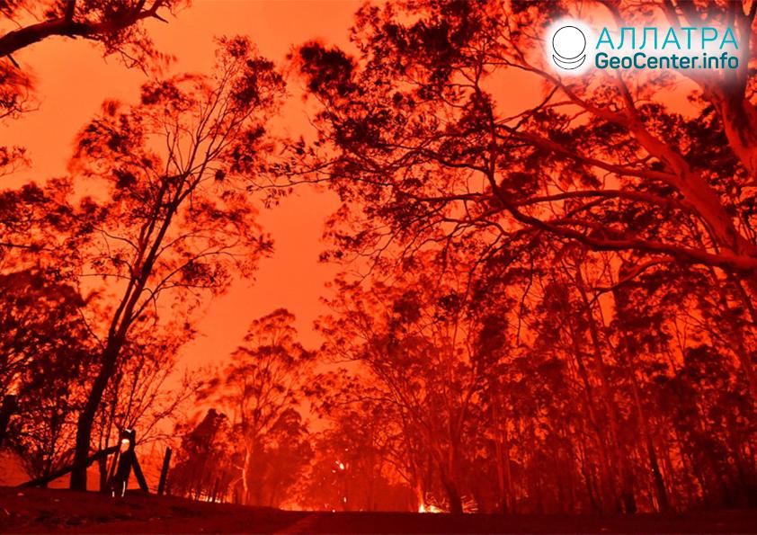 Anomálne požiare v Austrálii, január 2020