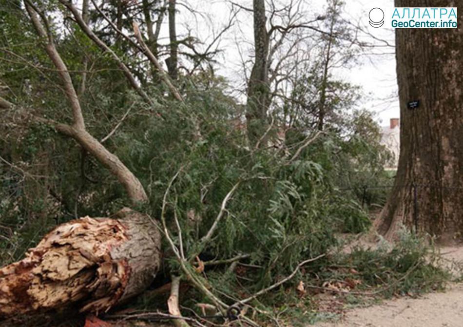 Буря в Маунт-Верноне, США, март 2018 года