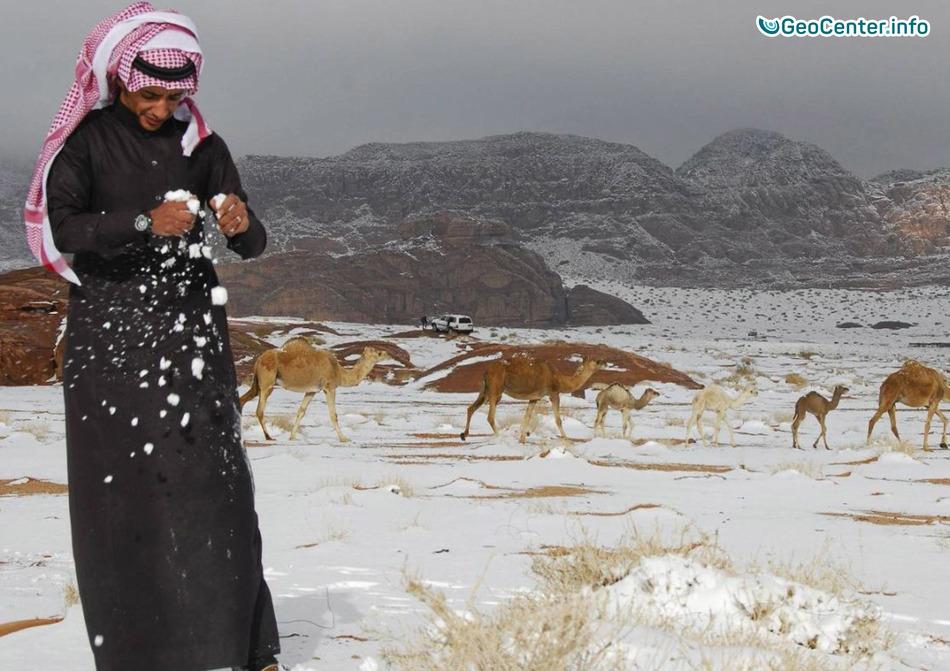 Изменение климата в ОАЭ, декабрь 2017 года
