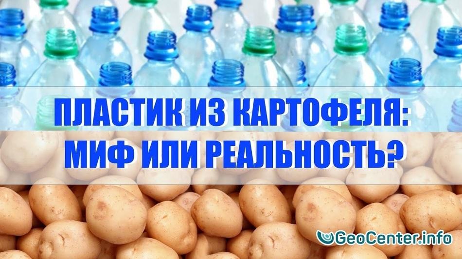 Пластик из картофеля: миф или реальность?