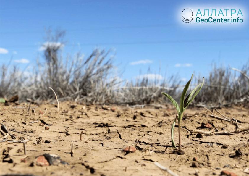 Крупнейшая засуха в Германии, ноябрь 2018