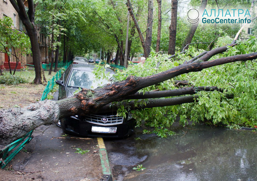 Последствия урагана в Москве, апрель 2018