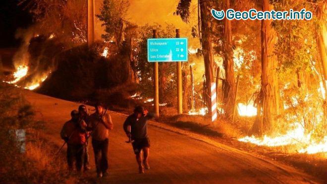 Лесные пожары в Чили