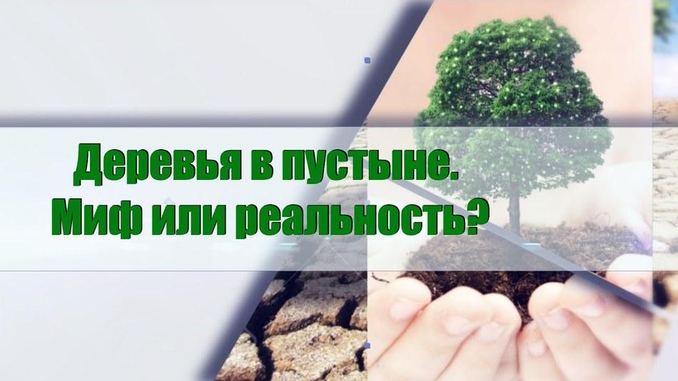 Деревья в пустыне. Миф или реальность? Научные разработки, новые технологии будущего.