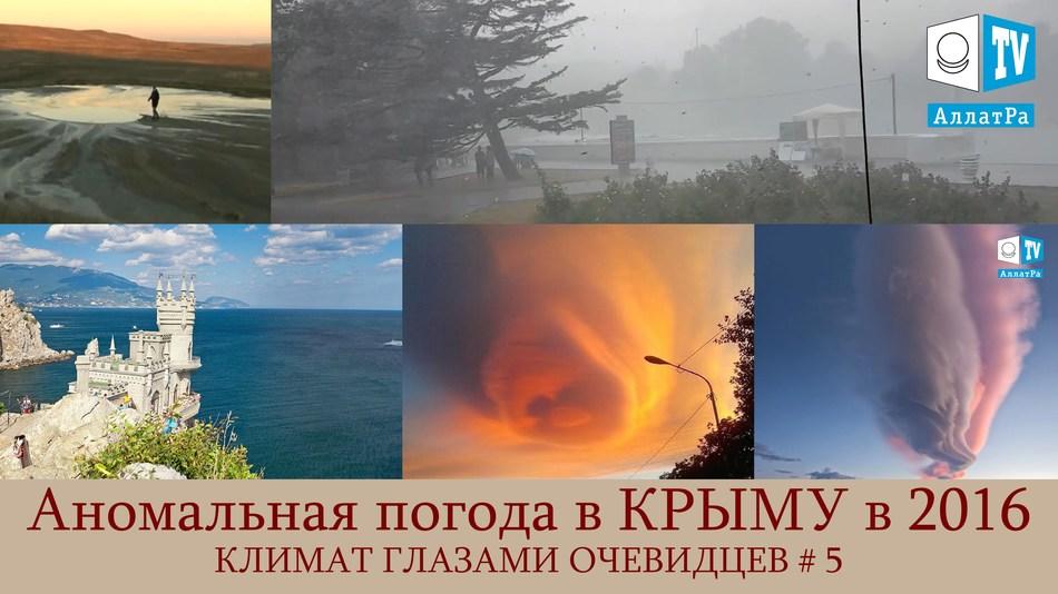 Аномальная жара, дождь, гроза, шквальный ветер в Крыму. Климат глазами очевидцев. Выпуск 5