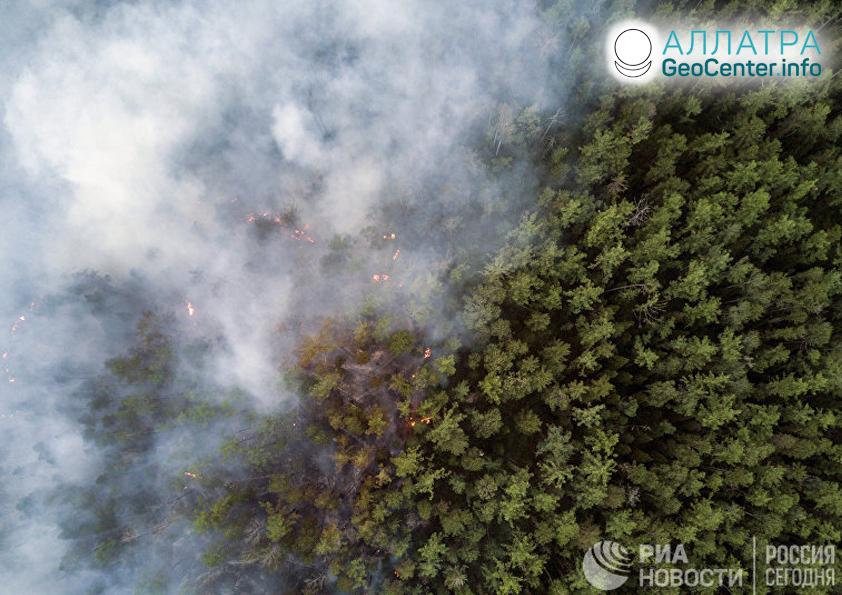 Горят леса в Сибири, июль 2019