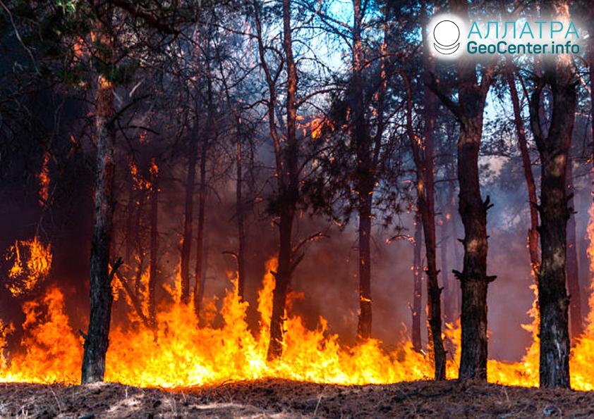 Lesní požár v Čukotském okruhu, červenec 2019