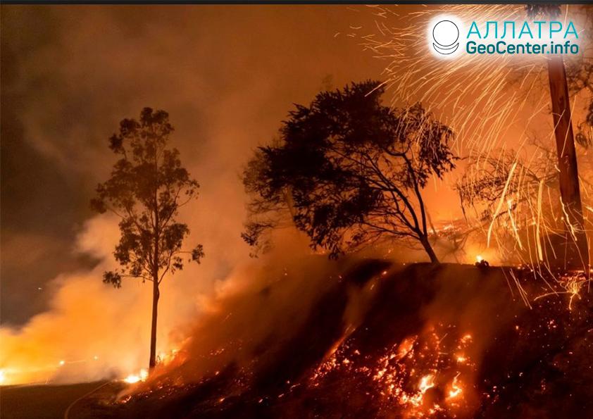 Лесной пожар в Калифорнии, США, ноябрь 2019