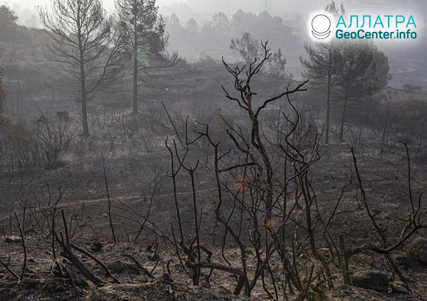 Lesný požiar v Katalánsku (Španielsko), jún 2019
