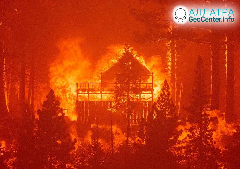 Лесные пожары, конец августа 2021