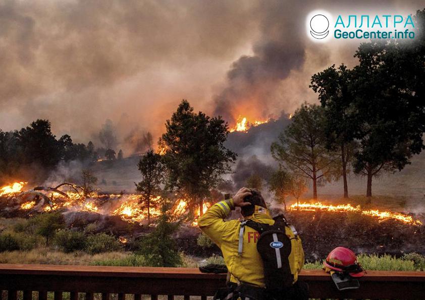 Лесные пожары на планете, август 2020