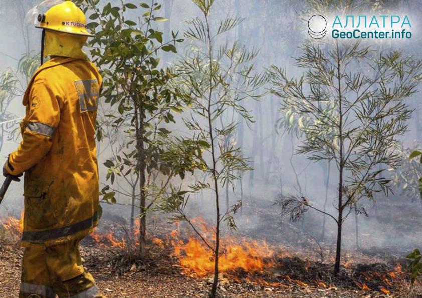 Лесные пожары в Австралии, март 2019