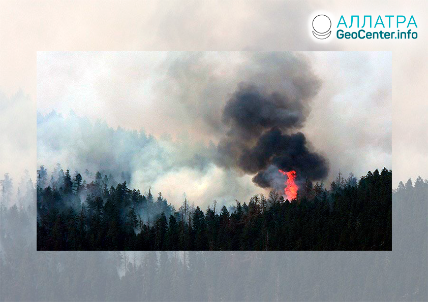 Масштабные лесные пожары, конец мая 2021