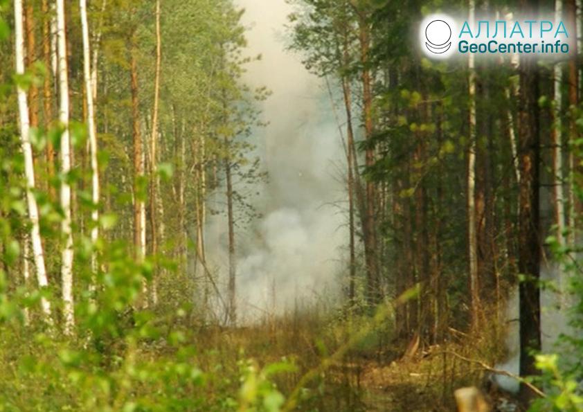 Пожары в Иркутской области, июль 2019