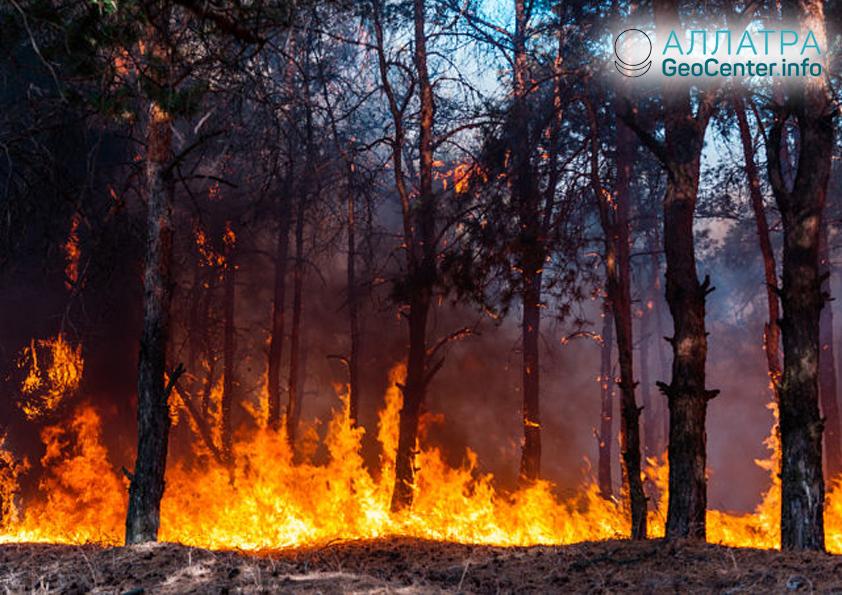 Přírodní požáry v Zabajkalsku, duben 2019