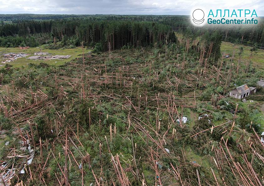 Разрушительные торнадо в начале августа 2021