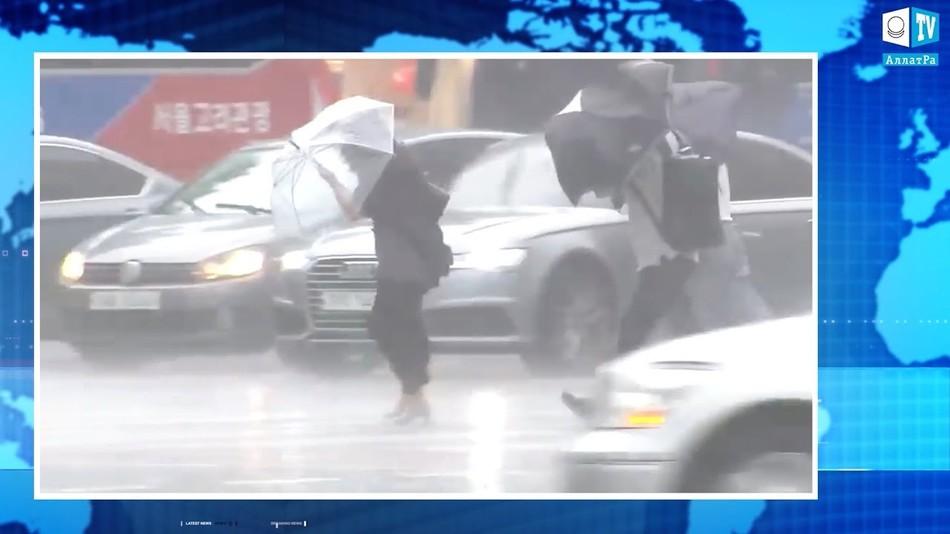 Тайфун «Линлин» в Южной Корее, катастрофические последствия стихии