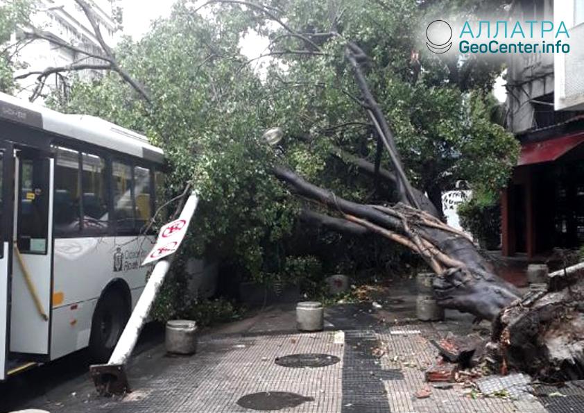 Ураган в Бразилии, февраль 2019