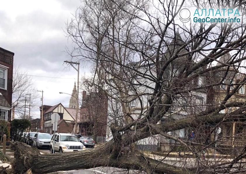 Зимний шторм Квиана в США, февраль 2019