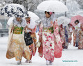Сильные метели в Японии