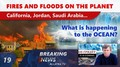 FIRES and FLOODS on the Planet: California, Jordan, Saudi Arabia. What is happening to the OCEAN?