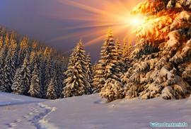 Удивительные стороны зимы