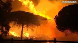 Огненная стихия бушует в Португалии и Испании, октябрь 2017