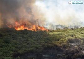 В аргентинской провинции Ла-Пампа с начала февраля вспыхивают природные пожары, февраль 2018 г.