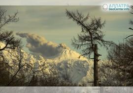 Газ, пепел и пар: новости о вулкане Шивелуч, 13-14 января 2019