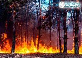 Лесной пожар в Чукотском округе, июль 2019