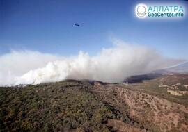 Лесные пожары в мире, начало апреля 2021