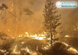 Опасные лесные пожары на Земле, июль 2021