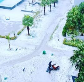 Povětrnostní anomálie v Dillí, liják doprovázený krupobitím, únor 2019